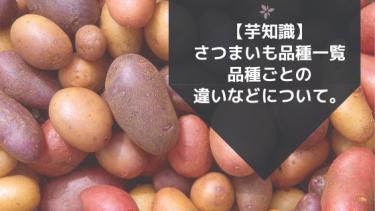 【芋知識】さつまいも品種一覧。品種ごとの違いなどについて。